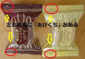 130107burubonfunwari1