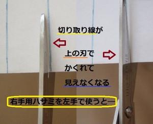 Hasami_rl