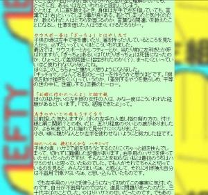 Hidarigumi-hgsenryuu-07
